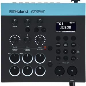 ROLAND TM-6