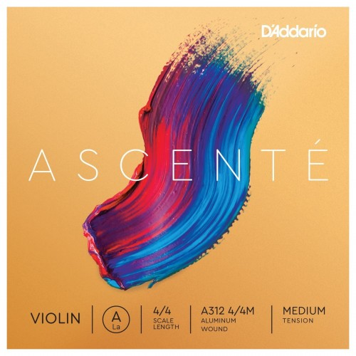 D'addario Ascenté violino